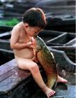 当孩子遇到动物