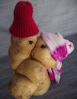 土豆搞笑图片