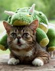 世界上最萌的猫