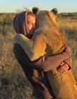 全球最有爱的人与动物