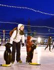 室外溜冰场图片 夜间溜冰场图片