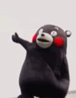 熊本熊搞笑视频