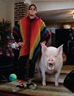 迷你宠物猪长大了 养宠物猪结果长大了