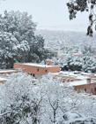 撒哈拉沙漠37年首降雪