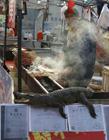 鳄鱼肉烤串 鳄鱼肉怎么吃