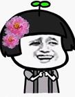 小仙女专用表情包 小仙女专用配图