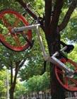 共享单车被破坏图片