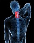 怎么放松脊椎 放松脊椎的方法
