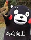 �щu字表(biao)情包下�d
