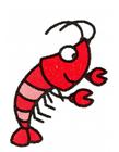 龙虾的画法简笔画图片