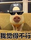 我觉得不行表情包 中国有嘻哈我觉得不行