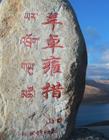 羊卓雍措风景图片