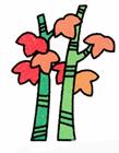 枫树简笔画步骤 枫树怎么画简笔画