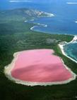 澳大利��希勒湖�L景�D片