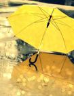唯美雨伞图片大全