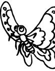 漂亮又简单的蝴蝶画法