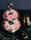 �[�P玫瑰�D片大全 桌上的玫瑰美的�你可以忘掉���