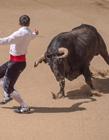 西班牙斗牛照片 场面非常的壮观