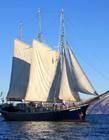 帆船图片大全 帆船图片素材