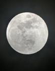 圆圆的月亮图片大全 圆圆的月亮像什么