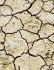 干旱的土地图片 土地干旱的原因