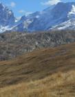 瑞士阿尔卑斯山图片 阿尔卑斯山在哪里