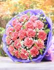 康乃馨花束图片 康乃馨花束图片大全 彩色康乃馨花束图片