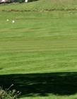 高尔夫球场图片 高尔夫球场图片介绍