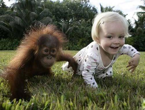 互相模仿的儿童和动物图片