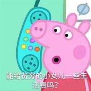 小猪佩奇带文字搞笑图片表情包