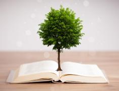 长出大树的书创意设计素材高清图片