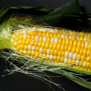 颗粒饱满的玉米美食高清图片