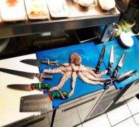 章鱼八爪鱼动物恶搞图片