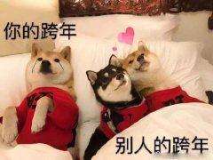 单身狗动物秀恩爱跨年带文字表情包图