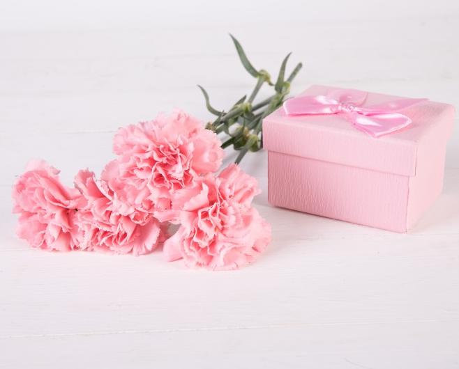 母亲节鲜花康乃馨的图片