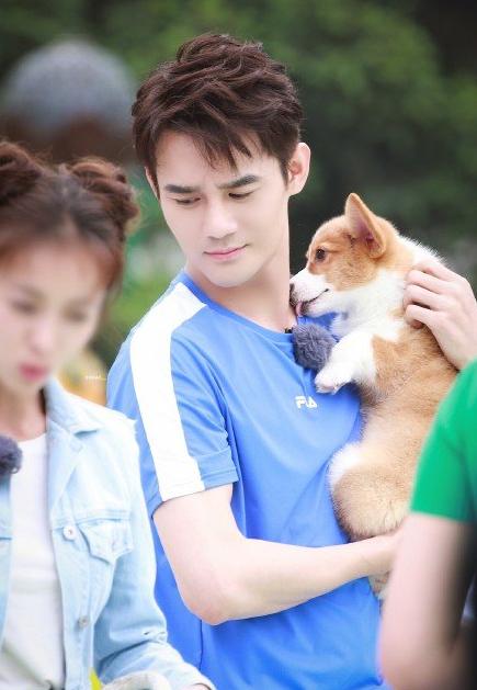 王凯被狗舔的图片