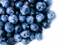 深蓝色的水果蓝莓图片