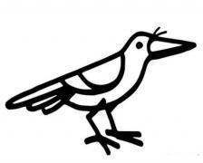 鸟的简笔画图
