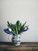 花瓶里的花朵图片