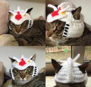 猫咪可爱的针织毛线帽子图