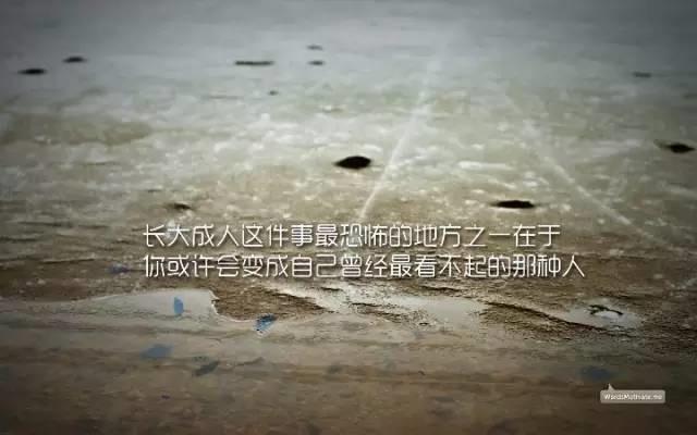 �钪菊Z�_�D片