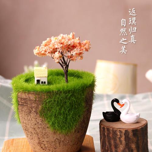 自然生�B美景_��意�D片