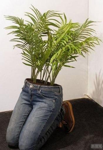 创意作品,牛仔裤里面种草