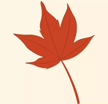 枫叶简笔画