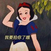 迪士尼渣女表情包。