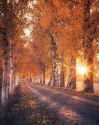 芬兰的秋色,屏住呼