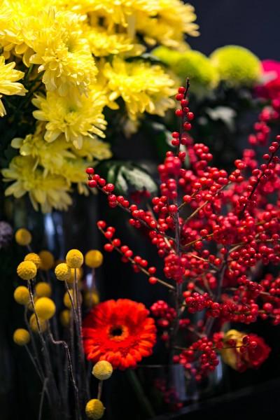 橙子的功效与作用_漂亮的鲜花图片大全集 最漂亮的鲜花图片大全-植物图片-热图网